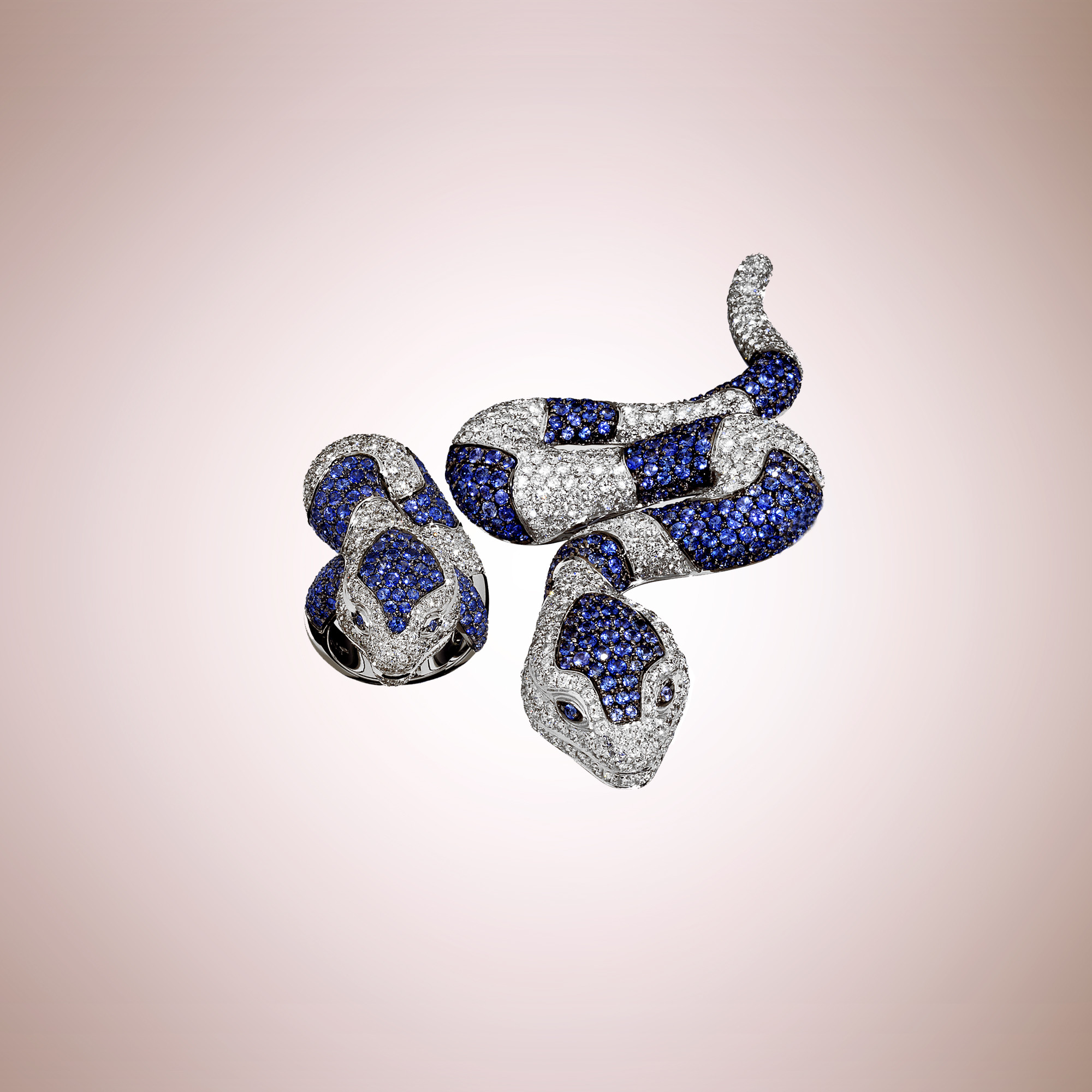 Snake ring and brooch