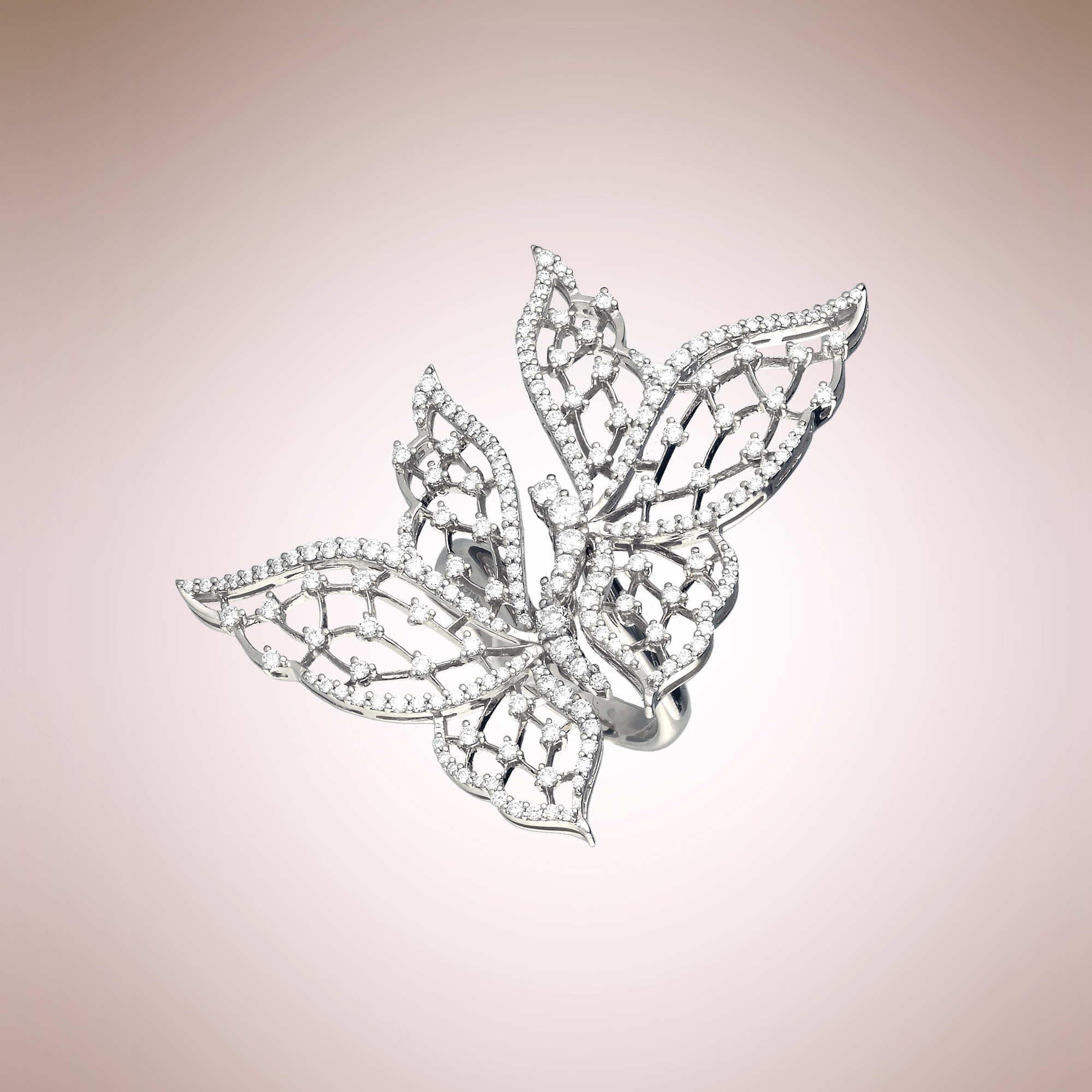 Light Wings ring